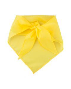 PLUS - foulard
